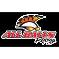 AllBallsRacing - Сальники и подшипники для мотоциклов
